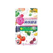 日本ISDG 乳酸杆益生菌促进便便酵素120粒 (白)